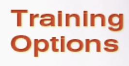 Reinforce Training Options